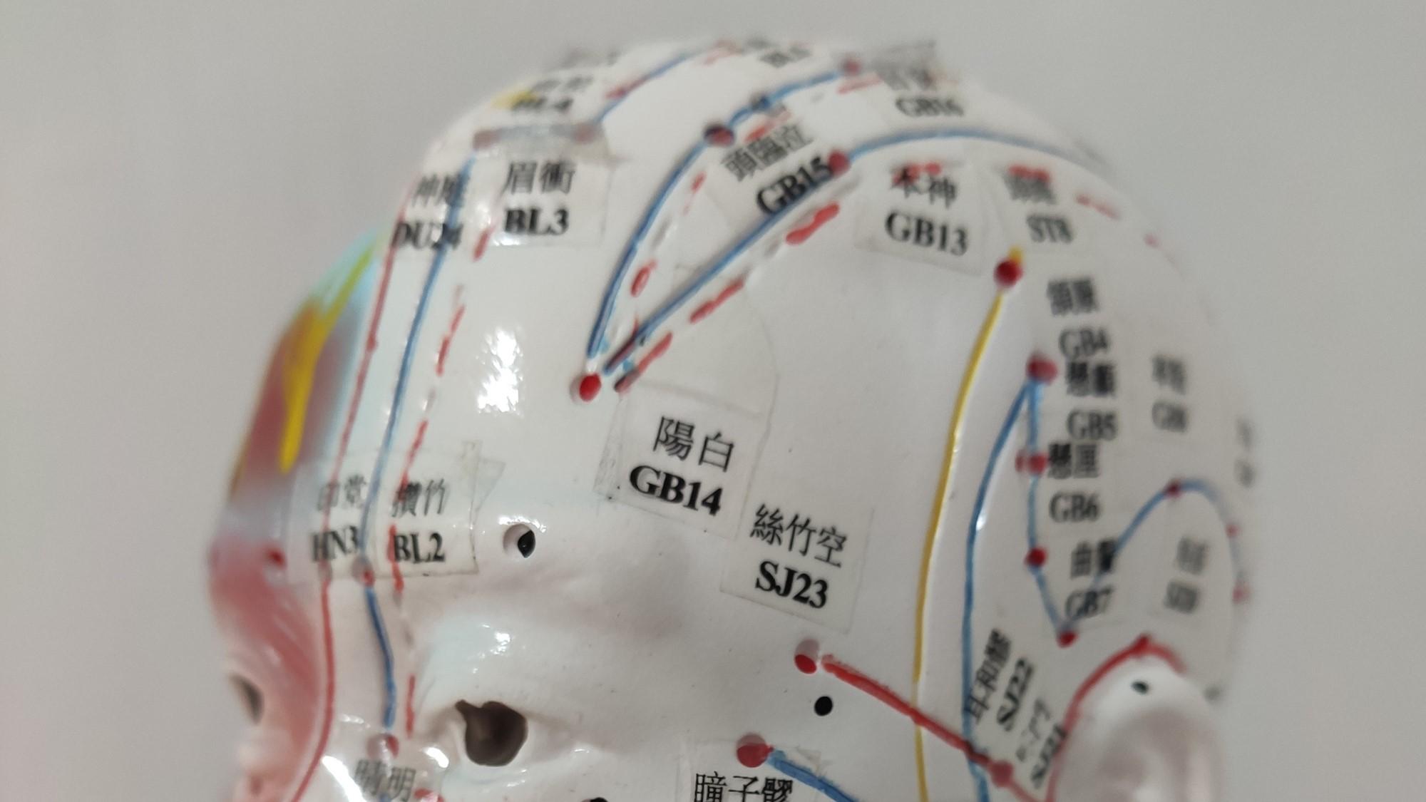 Curso de oftalmología y problemas oculares con acupuntura y fitoterapia